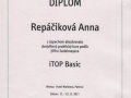 Diplom-01