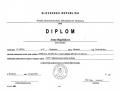 Diplom-03